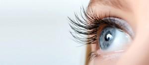 Die Augen sind eines der Organe, die für unser Wohlbefinden wichtig sind.